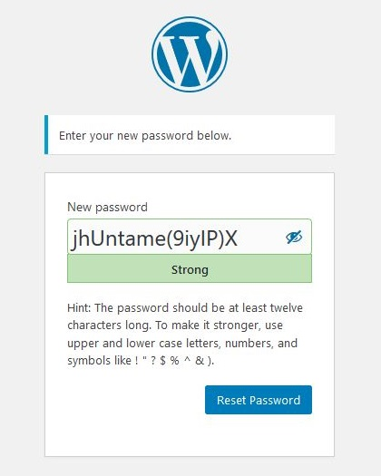 WordPress new password