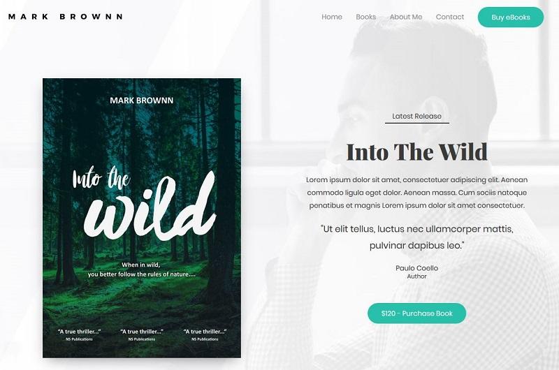 Astra Author WordPress theme