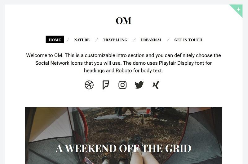 OM WordPress theme
