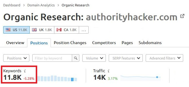 Keywords for AuthorityHacker found in Semrush