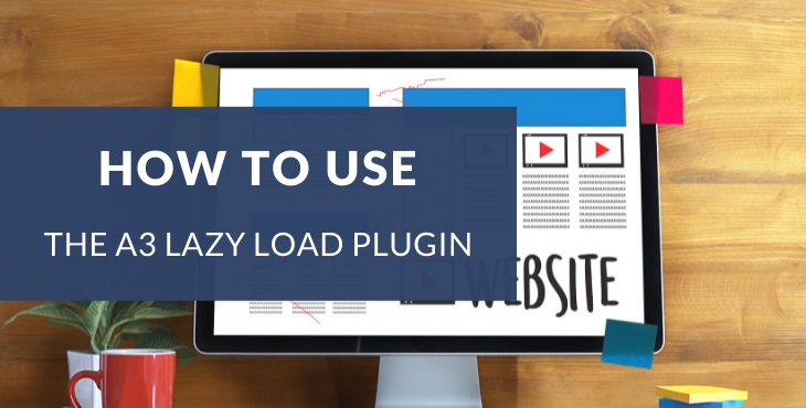 How to use the a3 Lazy Load Plugin